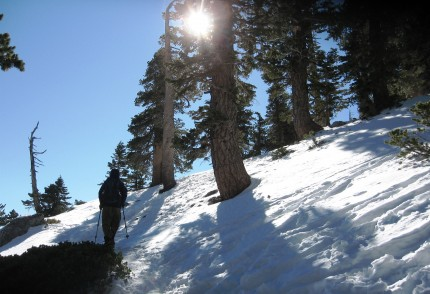 Mt. Baldy Trail with snow