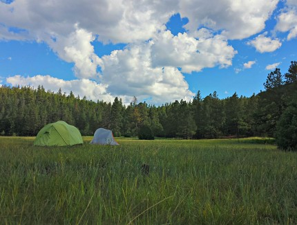 Camping in Carson Meadows